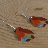 Anodised Aluminium Robin Drop Earrings AAE101901