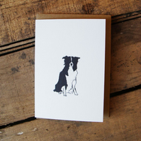 Sheep Dog Card
