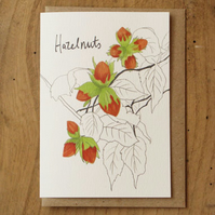 Hazelnuts Card