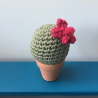 Crochet cactus with hot pink flower - khaki green