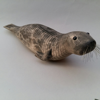 Seal in beech