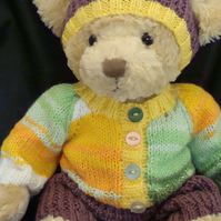 Teddy Bear Sweater Hat and Trousers Teddy Bear Jumper with Hat and Trousers