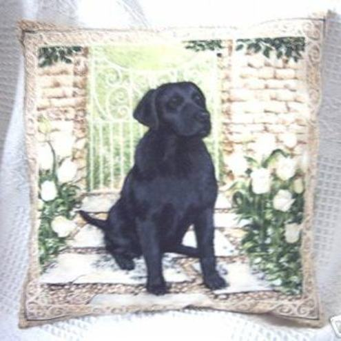 Lovely black labrador sitting by the gate cushion