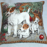 Jack Russel mum and pups in the garden cushion very rare !