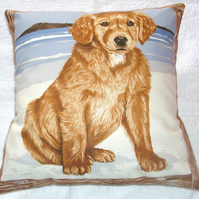 A golden retriever pup on the beach cushion