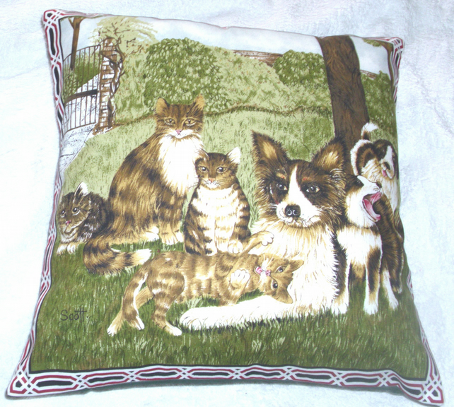 Dogs  and Cats choral meeting in the garden cushion