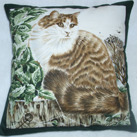 fluffy tabby and white cat sitting on a garden fence cushion