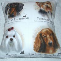 Dachshund, Yorkie, Maltese, long haired Dachshund portrait cushion