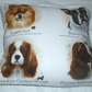 Pomeranian, Boston Terrier, King Charles spaniel and Springer portrait cushion