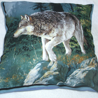 A lone Wolf on a slope in a forest cushion