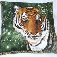 On Safari magnificent Tiger emerging from forest cushion