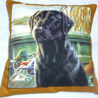 lovely Black Labrador waiting for action cushion
