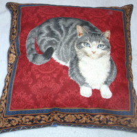 A very pretty grey and white cat lying on a red background cushion