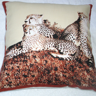 On Safari Leopard lying with her two cubs watching cushion