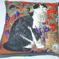 A lovely black and white cat in the garden cushion