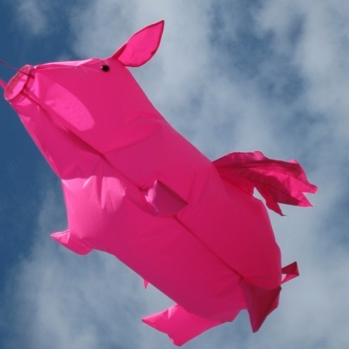 Large Flying Pig Windsock