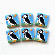 Puffin Magnet , Puffin Fridge Magnet, Bird Magnets, Seabirds, Gift for Teacher