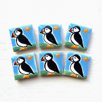 Puffin Magnet, Puffin Fridge Magnet, Bird Magnets, Seabirds, Gift for Teacher