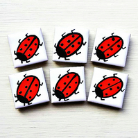 Ladybird Magnet, Fridge Magnet, Insect Magnet,