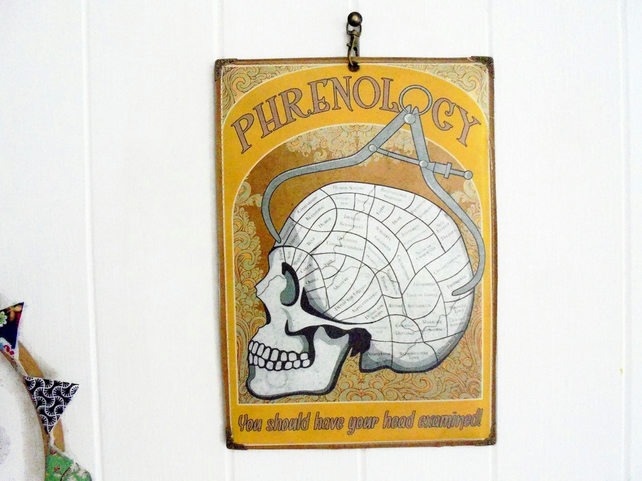 Hanging waterproofed reversible Wall Art, skull phrenology