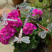 Stained  Glass Dragonfly Stake x 3 - Made to Order - Plant Pot Decoration