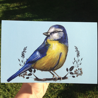 Blue Tit Bird Greetings Card - Vivid Colours