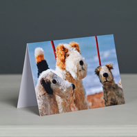Trio of Dog on Wheels Toys Greeting Card