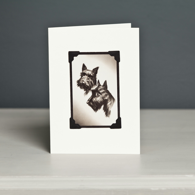 Two Scottish Terriers Greeting Card