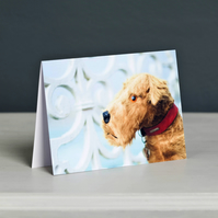 Spangles Vintage Terrier Greeting Card