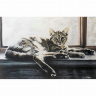 Tabby Cat Watercolour Signed  A4 Print (11.75 x 8.25 inches)