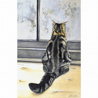 TABBY CAT WATERCOLOUR A4 SIGNED PRINT