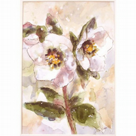 Hellebore (Christmas Rose )  Original Floral Watercolour Painting 9 x 12 inches