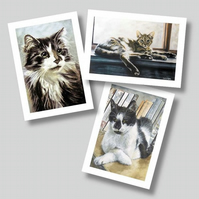 Cats - Set of 3 Blank Greetings Cards from Original Watercolours