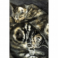 Tabby Cats Large ( A3) Signed Print from My Original Painting