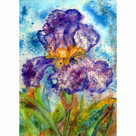 Purple Bearded Iris Large Floral Watercolour Painting 28x19.75inches