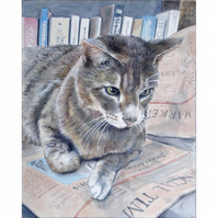 Framed Watercolour Painting of a Cat 'Crisis? What Crisis?' 23 x 27.5 inches
