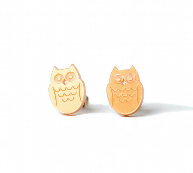 Acrylic Owl Stud Earrings