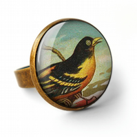 Affable Bird Ring (TB03)