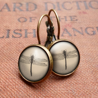 Vintage Dragonfly Leverback Earrings (ER03)