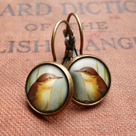 Reed Warbler Leverback Earrings (TB07)