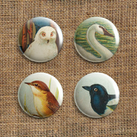 Badge Pack – Set Of 4 Bird Button Badges (RR)