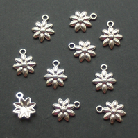 10 Flower Daisy Charms