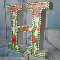 Letter H, Poppies, freestanding initials, red poppy