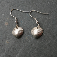 Clam Sea shell silver earrings