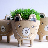Spotty bear planter-brown bear plant pot