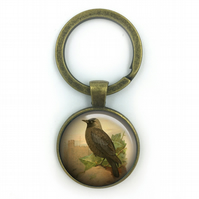 Jackdaw British Birds Keyring, Jackdaw, Gift for Him, Gift for Men, painting, Br
