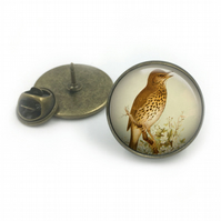 Song Thrush Lapel Pin Badge, lapel, Gift for him, British birds, wildlife, gift