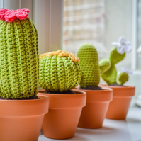 Cactus.Cacti in Terracotta Pots.Crochet Amigurumi.Choose from 37 flower Colours.