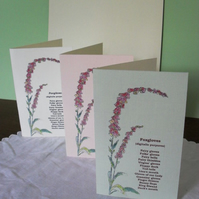 Set of three blank greetings cards - Foxgloves