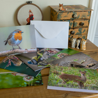 Wildlife card for greetings and gifts in a range of photographic subjects shown